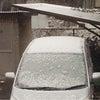 新年♫初雪♡の画像