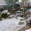 元旦夕方から~雪やこんこん!の画像