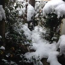 名古屋大雪