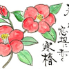 日本の七十二候・・・・No.545の画像