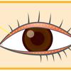 まつ毛がフサフサになって目元が若返るセルフケアの画像