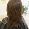 髪のダメージは治ります!!!の画像