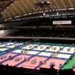 全日本選手権大会  …