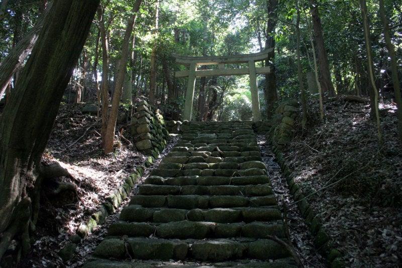 御嵩城(権現山城)/⑧神社の参道