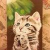 お祈りするネコちゃん。の画像