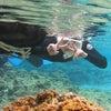 久しぶりに、海に出ました♪サンゴビーチでリピーター様とシュノーケル!!海もキレイでお魚いっぱい♪の画像
