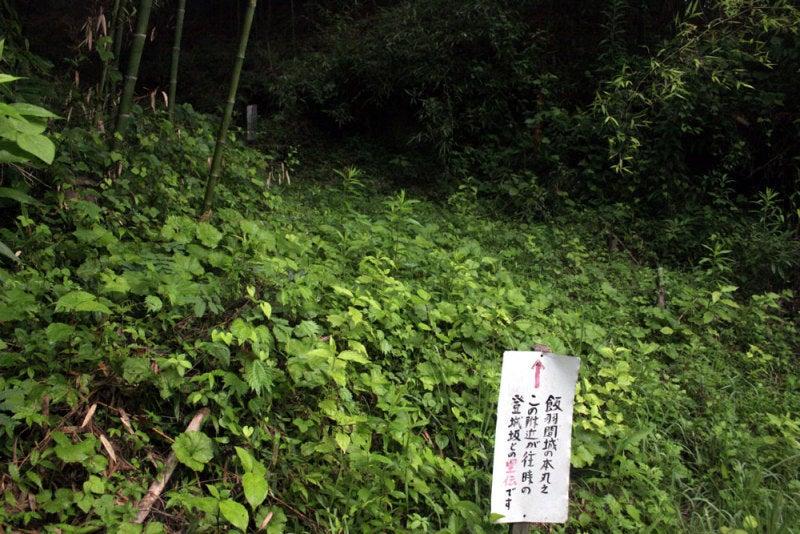 飯羽間城/⑦大手道