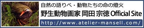 岡田宗徳のオフィシャルサイト