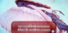 徒然ゲームプレイ日記‐Wii‐【スカウォ】勇者の詩3節集め後、ナリシャ様②