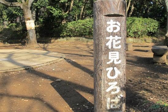 里見公園 bbq