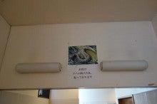 ツバメ避けの蛇