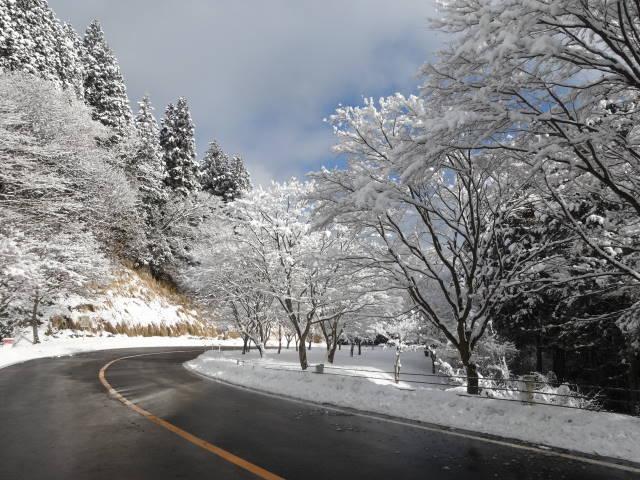 ドライブ ウェイ 比叡山