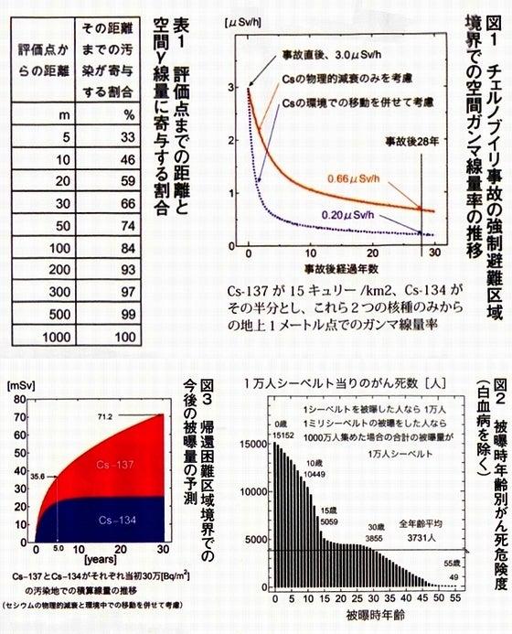 DAYSJAPAN2014年6月版 小出裕章先生解説_図