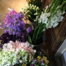 春のお花いっぱいで …
