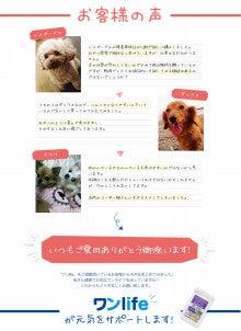 愛犬のためのワンlifeサプリメント