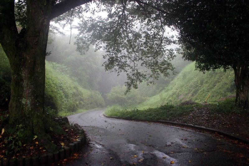 松尾城/④城址公園の入口から振り返った所