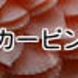 【最新】レッスンスケ…