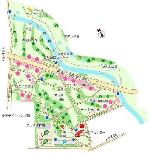 野川公園 バーベキュー