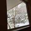 カルルスの冬らしい景色。の画像