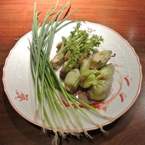 ジャッジョーロ銀座 春の山菜