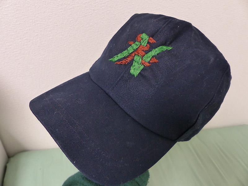 ベイマックスのタダシの帽子完成しました。