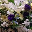 寺田歯科医院 / D…