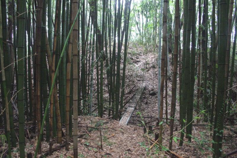吉田城/⑥二の丸から本丸への入口