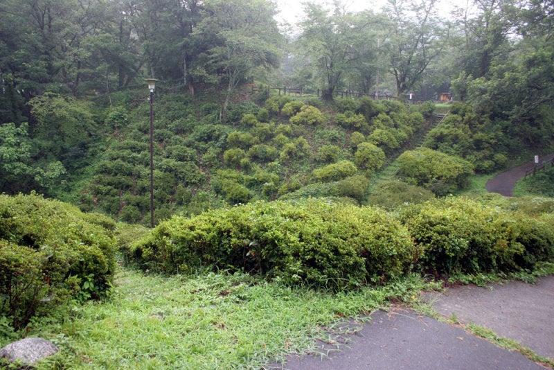大島城/⑥二の丸と本丸の間の堀切