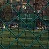 慶応大学との試合の画像