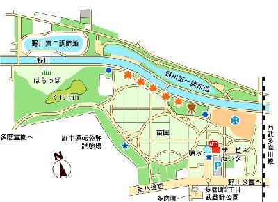 武蔵野公園 バーベキュー