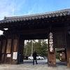 JR京の冬の旅 特別公開妙心寺三門・衝梅院の画像