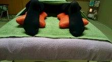 電気毛布と足枕3