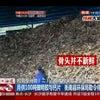 ▼唸声中国映像/ゼラチン材工場に積み上げられる骨にはハエやウジ・・・の画像