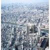 スカイツリー☆スカイレストラン634(musashi)で講習会&ランチ♡の画像