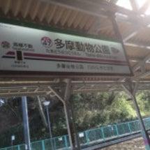 多摩動物公園。