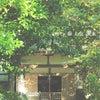 安養寺 青龍山の画像