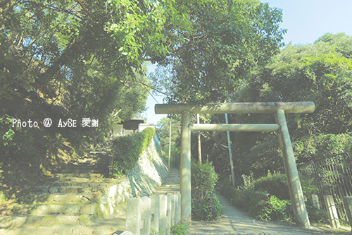安養寺 青龍山