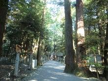 椿大神社2
