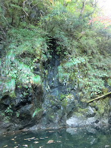 天岩戸神社と日室ヶ嶽10