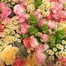 春の香りのコーディネート♡の記事より