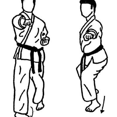 基本型Ⅰで突き・蹴り・受けと、運足の大切さを再確認の記事に添付されている画像