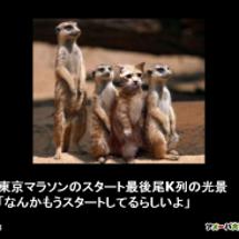 東京マラソンのスター…