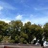 緊急開催「瞑想茶話会〜サトケンが語る 聖地と場の力」の画像