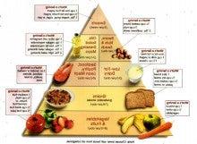 dietary approaches to stop hypertension dash diet pdf australia