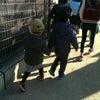 小学校入学前、集団登校予行練習!の画像