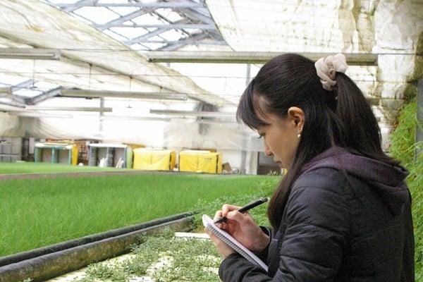 農場見学(若井めぐみ先生)