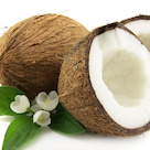 お客様から教えて頂きました。ココナッツオイルが流行っているそうです。の記事より