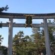 京都の梅 ~北野天満…