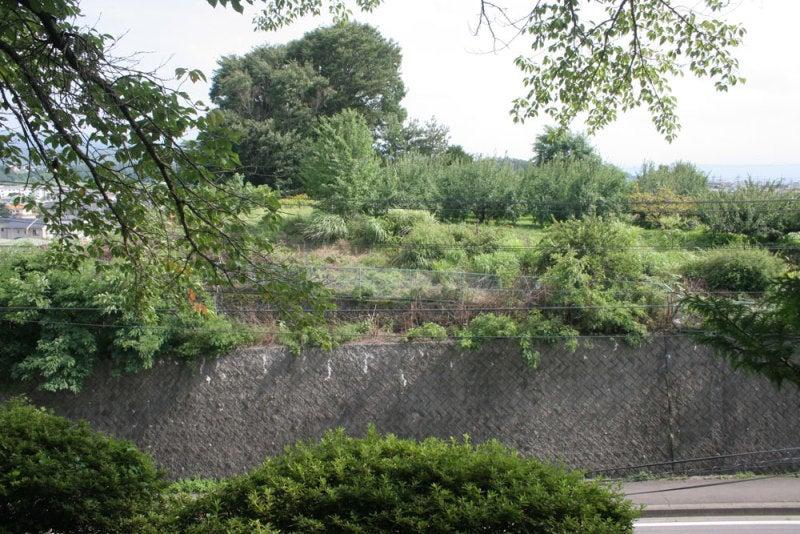 大井城/⑥王城公園から見た黒岩城