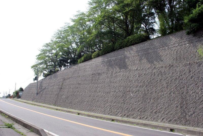 大井城/⑤王城公園南側の堀切